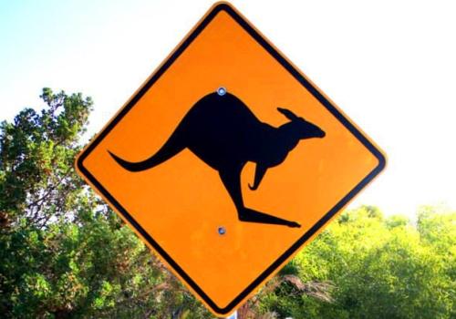 australia señal canguro